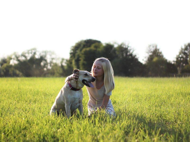 Twoje dziecko marzy o psie? Sprawdź, jakie rasy będą najbardziej odpowiednie