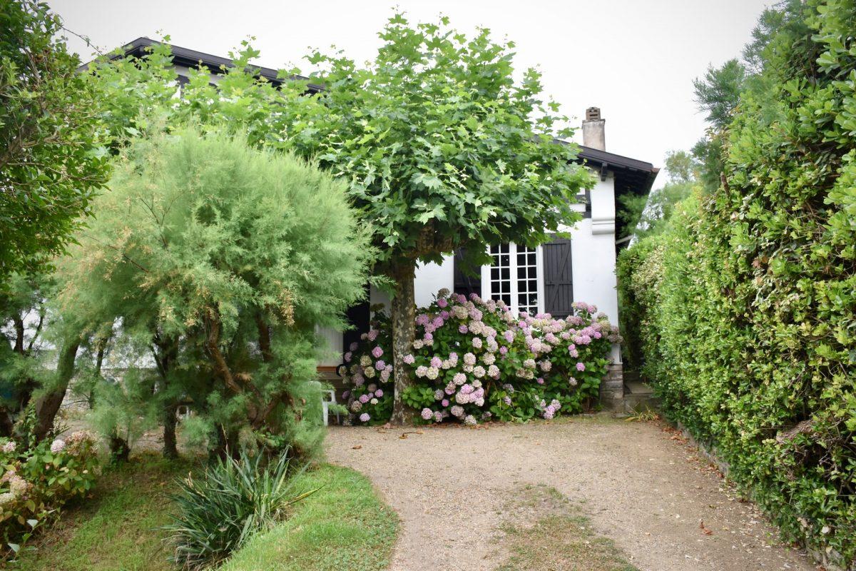 Krzewy ogrodowe – jakie wybrać?
