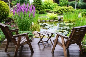 Oczko wodne w ogrodzie – jak je wykonać?